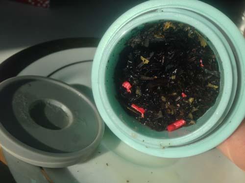 tea compartment davids tea