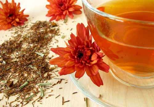 Can You Drink Too Much Rooibos